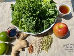 Ingredients for a Raw kale salad with ginger, sesame and soy
